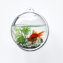 Wall hanging aquarium