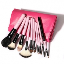Premium Professional 10 Pcs Beauty Makeup Brush Set Kit With Case