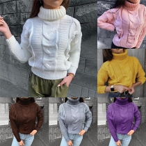 Simple Style Long Sleeve Turtleneck Solid Color Sweater